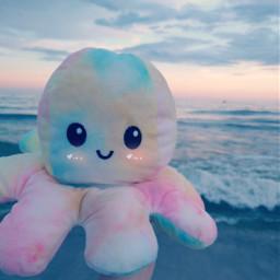 bringbackremixchat saveremixchat stopforcingkidstoremix beach seashore ocean octopusplush octopustoy octopus plush cute tie-dye evening purple tie