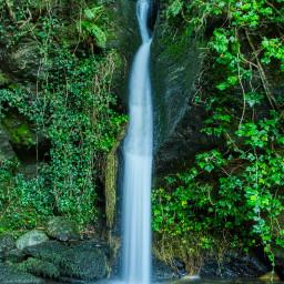 freetoedit photography nature forest fall landscape waterfall