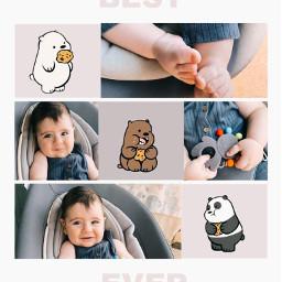 freetoedit bear baby collage
