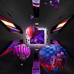balloon bird hotairballoon parrots tropicalbirds purple surreal madewithpicsart irclookingup lookingup