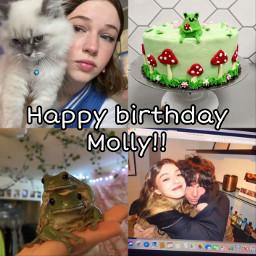 itsmollysbirthday