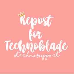 technosupport technoblade technobladeneverdies mcyt dreamsmp pleaserepost freetoedit