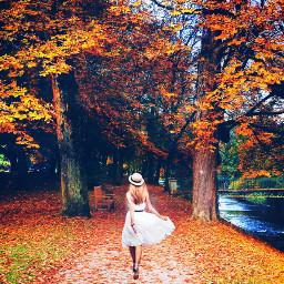 madeby creatorstephanie interesting park trees whitedress whitehat girl walking sun sparkles walkingby lake replay freetoedit