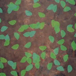 falling leaves freetoedit colorpaint