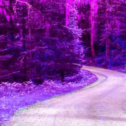 freetoedit purple road trees path cute viral dontsteal purp