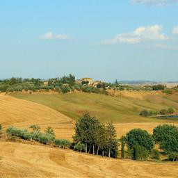 landscape nature fields hills yellow trees freetoedit myphotography