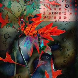 september calendar leaves autumn fall redleaves watercolour freetoedit local srcseptembercalendar2021 septembercalendar2021