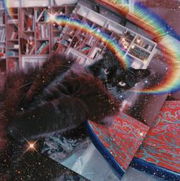 freetoedit catnoir