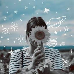 sunflower sky sketch doodle doodleart anjalimitttal anjalimittal freetoedit
