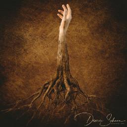 freetoedit hands hand tree wood surreal surrealart surrealism ircthereachinghand thereachinghand
