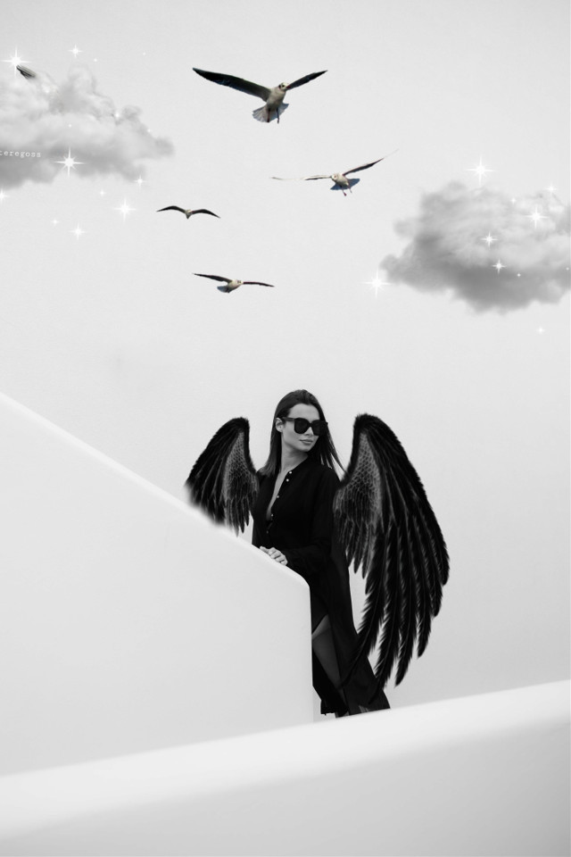 #Aves#alasdeangel