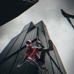 spiderman intothespiderverse marvel milesmorales peterparker multiverse blackandwhite freetoedit