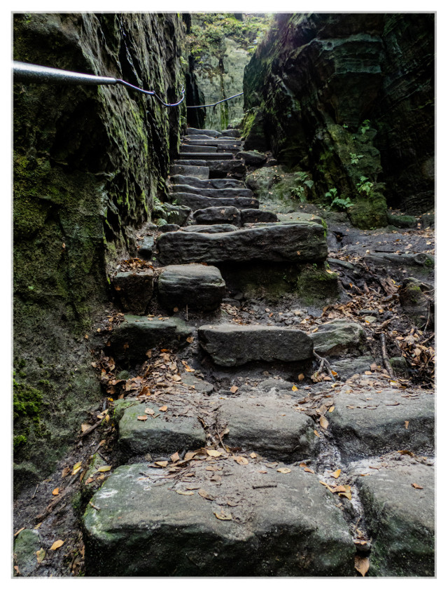 My Host gave me the tip to go to the Tyssa walls over in the Czech Republic. Beautiful there! These steps lead up to the crest of the walls, the view from up there is lovely! More pics will come soon!  #stairs #travel #tyssaWalls #czechrepublic  #wildnature #stonemade