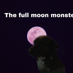 freetoedit werewolfs