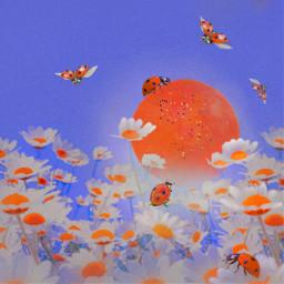 mastershoutout whimsical fantasy cute ladybugs flowers colorful madewithpicsart freetoedit