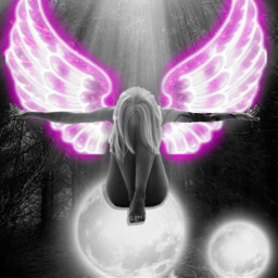 freetoedit angel neon pink light blackandwhite challenge neonsigns2021