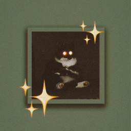 freetoedit heypicsart customwallpaper wallpaper cat blackcat follow@sleeping3cat haveaniceday local follow