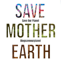 freetoedit savetheoceans savetheearth saveourplanet ourplanet change help fyp remember news page interesting nature oceans animals climatechange plastic nomoreplastic blogsaveourplanet saveourplanetoficial