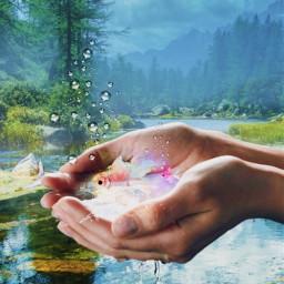 fish pinkaesthetic hand hands lake forestbackground apr3 watereffect picsartchallenge freetoedit picsart srcpinkfishies pinkfishies