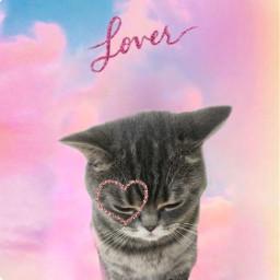 freetoedit lover lovertaylorswift loveralbum ılovelover