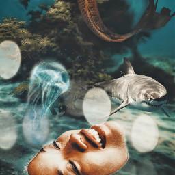 underwaterlife madewithpicsart heypicsart freetoedit local
