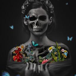 art skeleton artwork local