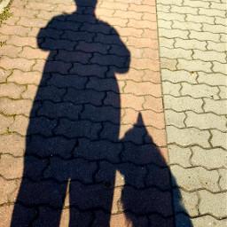 shadow shadows myhusband mydog sunny sunnyday