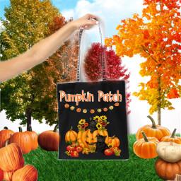 pumpkin bag freetoedit ircdesignthebag designthebag