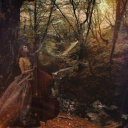 freetoedit fantasy wood autumn girl madewhitpicsart editbyme local