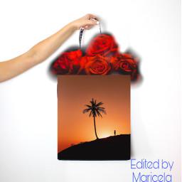 freetoedit picsart unsplash ircdesignthebag designthebag