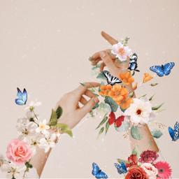 art collage butterflies flores primavera glitter freetoedit