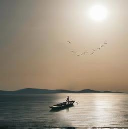 pordosol freetoedit picsart ircsunsetsilhouette sunsetsilhouette
