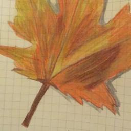 freetoedit autumn fall leaf cute youngartist drawing art cool lol