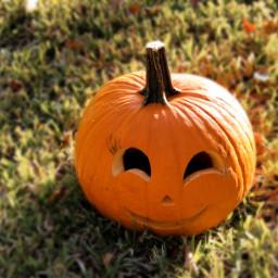 jackolantern pumpkin carvedpumpkin smile autumn halloween october freetoedit local