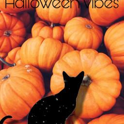 freetoedit halloweenvibes