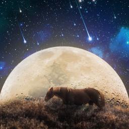 dreams stars moon light dreamlad freetoedit unsplash